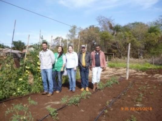 Parceiras ajudam pequenos produtores